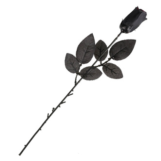 Schwarz rose - 19900