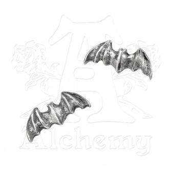 Ohrringee Bat Studs E186 - Alchemy Gothic