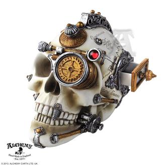 Dekoschädel Alchemy Gothic - Erasmus Darwin´s Steam-Cerebrum Skull, ALCHEMY GOTHIC