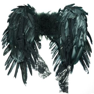 Kostüm Flügel - FAIRY - POIZEN INDUSTRIES, POIZEN INDUSTRIES