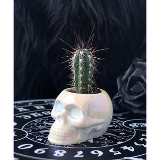 Dekoration Dose KILLSTAR - Skull Planter - AURA, KILLSTAR
