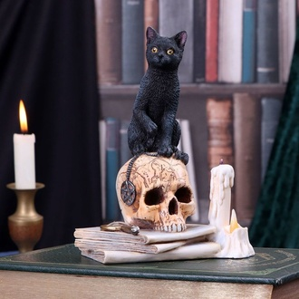 Dekoration Spirits of Salem, NNM