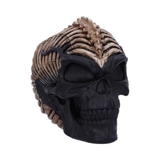 Dekoration Spine Head Skull, NNM