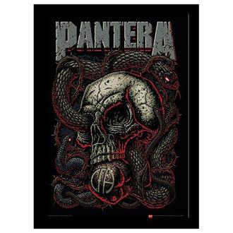 Poster mit Bilderrahmen Pantera - Snake Eye - PYRAMID POSTERS, PYRAMID POSTERS, Pantera