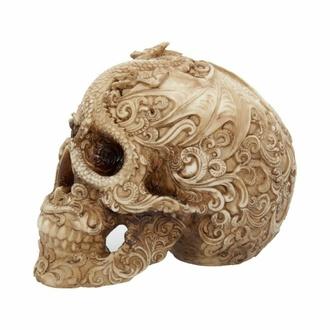 Dekoration Schädel Cranial Drakos, NNM