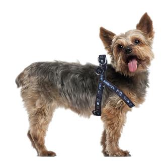 Halsband für einen Hund STAR WARS - DARTH VADER, CERDÁ, Star Wars